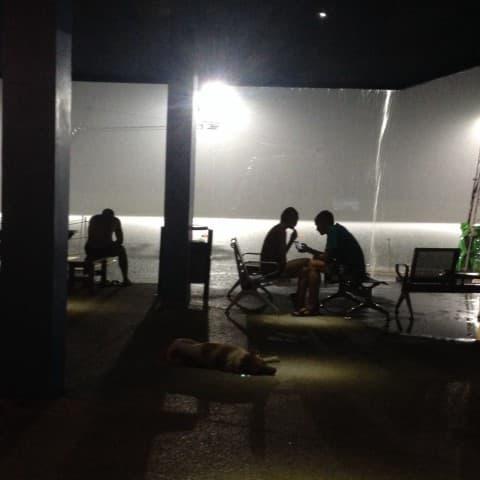 ночной вейк парк