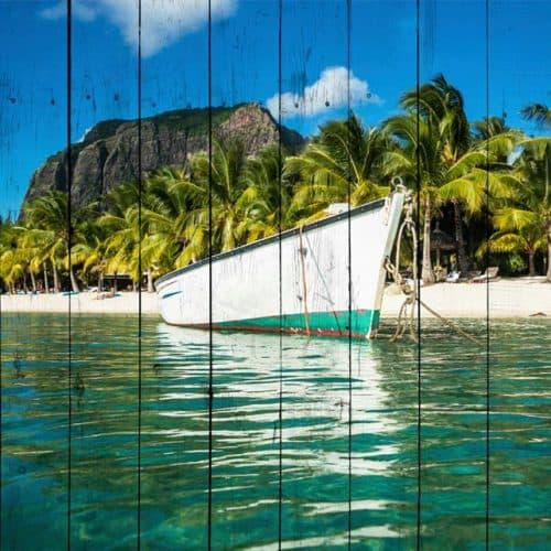 белая лодка и пальмы